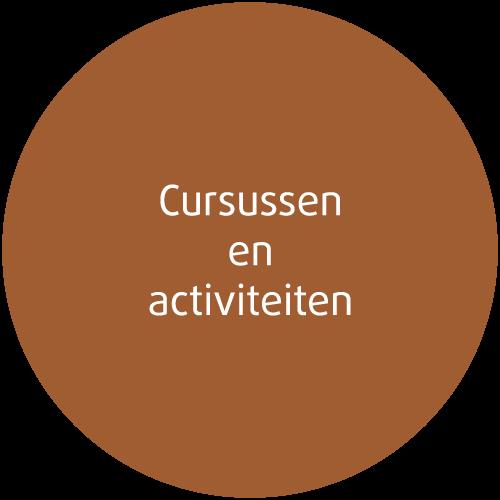 Icon educatie-ontwikkeling